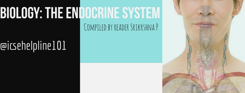 Biology - Endocrine System (Notes) - Compiled by Srikrshna P | Helpline for ICSE Students (Class 10) @icsehelpline101